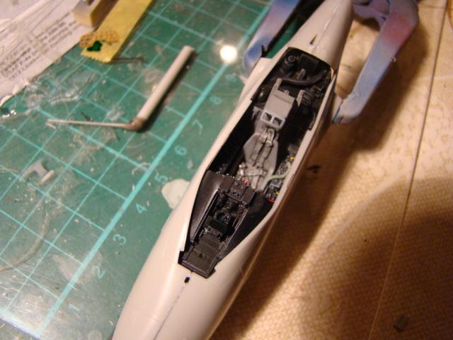 DOUGLAS F4D-1 Skyray, Tamiya 1/48. Dsc05238