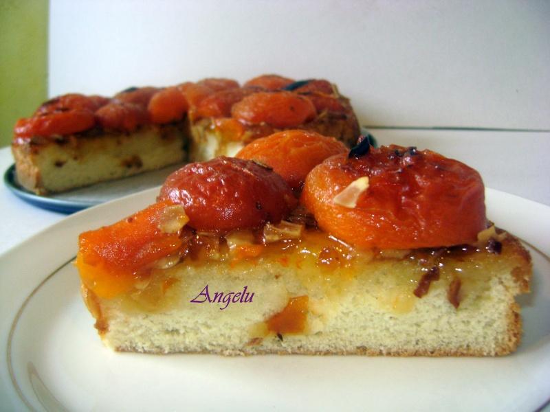 gâteaux aux abricots Abrico10