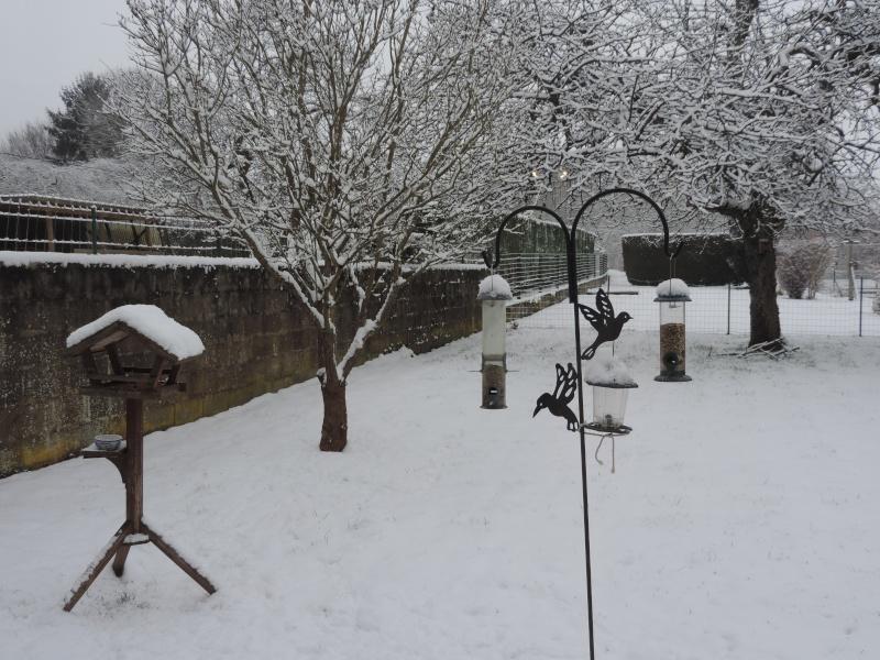 Plein de neige ! Dscn1216