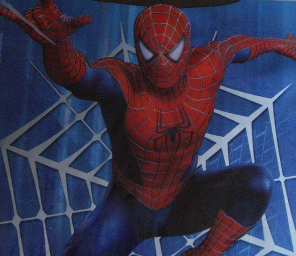 Le sanctuaire des héros - Page 6 Spider10