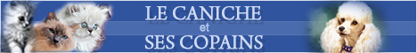 ( Réalisé) demande de bannière pour LECANICHE ET SES COPAINS  Lecani10