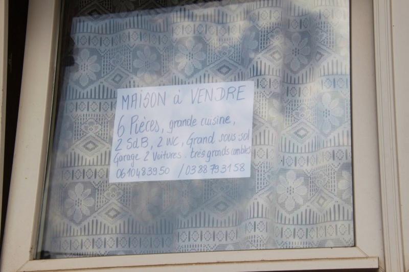 Maison,appartement à vendre ou à louer à Wangen - Page 2 Img_9839
