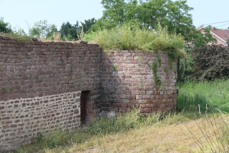 Chantier d'insertion pour la restauration du mur d'enceinte de Wangen - Page 2 Img_9872