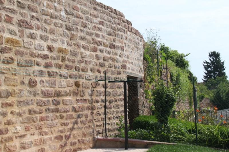 Chantier d'insertion pour la restauration du mur d'enceinte de Wangen - Page 2 Img_9877