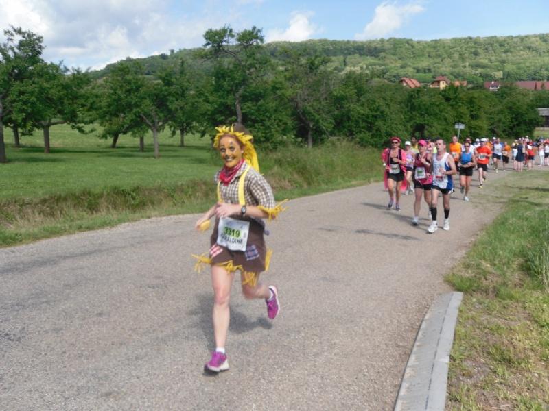 Le Marathon du Vignoble d'Alsace à Wangen le 16 juin 2013 Sam_0110