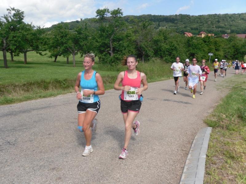 Le Marathon du Vignoble d'Alsace à Wangen le 16 juin 2013 Sam_0114