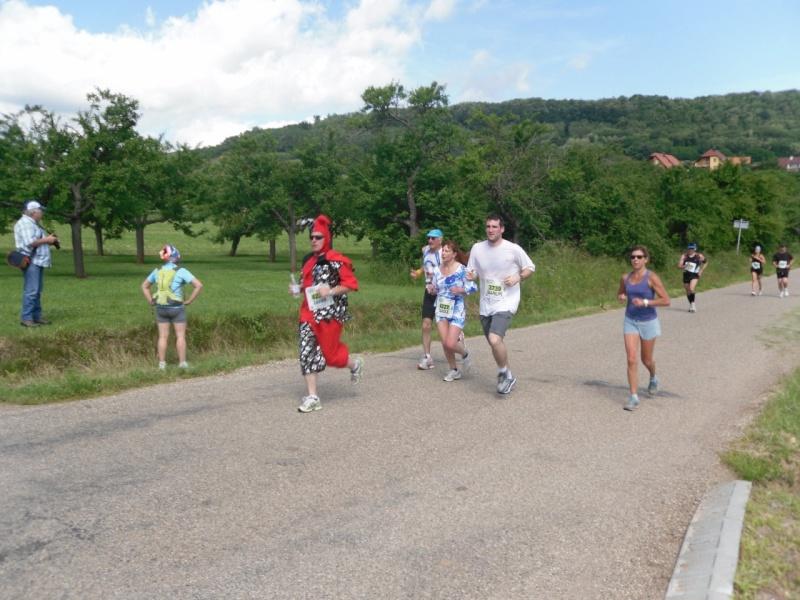 Le Marathon du Vignoble d'Alsace à Wangen le 16 juin 2013 Sam_0116