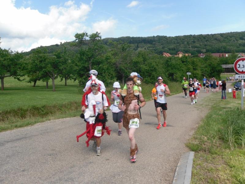 Le Marathon du Vignoble d'Alsace à Wangen le 16 juin 2013 Sam_0123