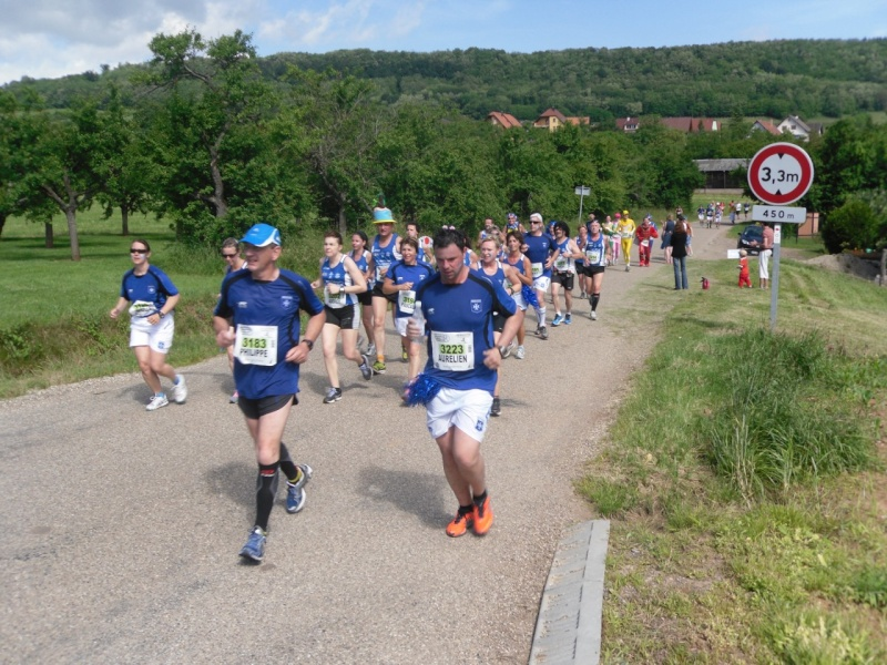 Le Marathon du Vignoble d'Alsace à Wangen le 16 juin 2013 Sam_0132