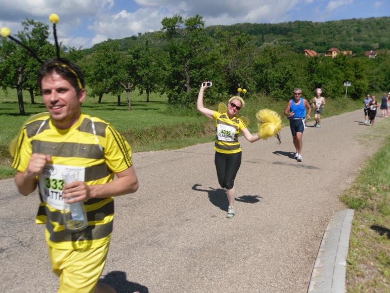 Le Marathon du Vignoble d'Alsace à Wangen le 16 juin 2013 Sam_0218
