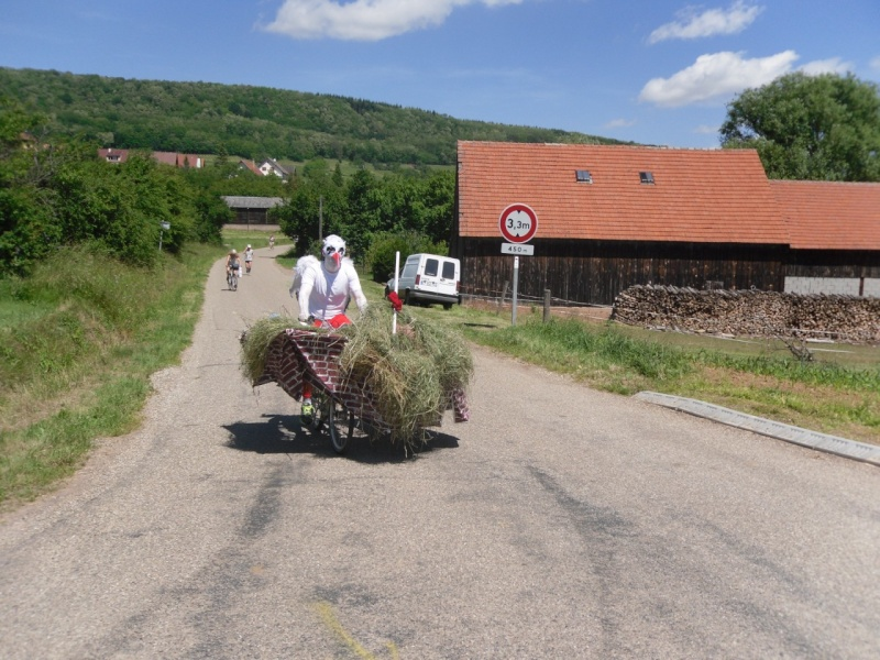 Le Marathon du Vignoble d'Alsace à Wangen le 16 juin 2013 Sam_0310