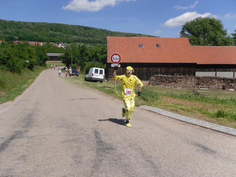 Le Marathon du Vignoble d'Alsace à Wangen le 16 juin 2013 Sam_0311