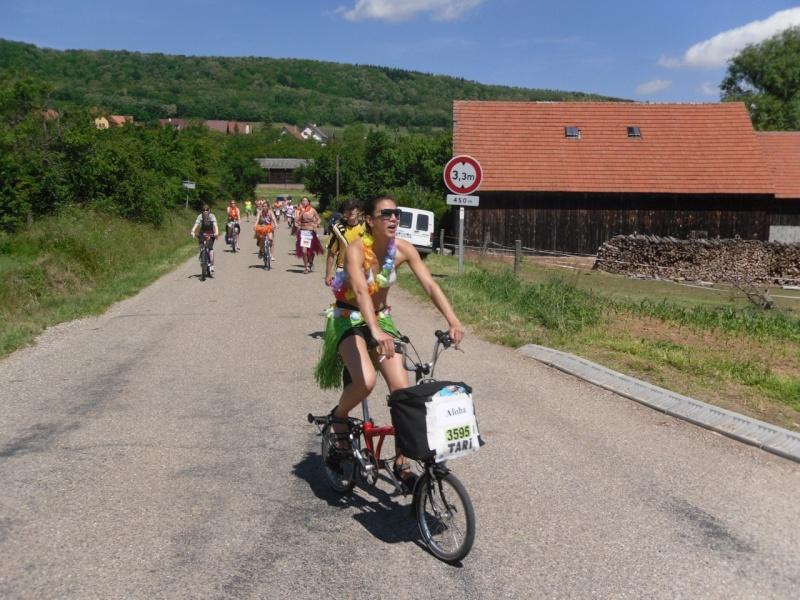 Le Marathon du Vignoble d'Alsace à Wangen le 16 juin 2013 Sam_0313