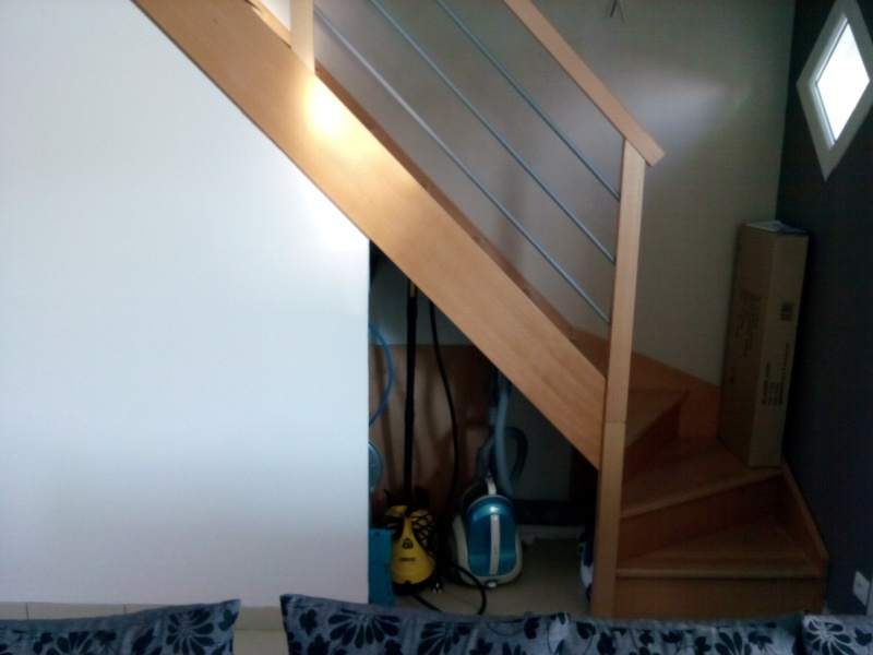 sous escalier Img_2012