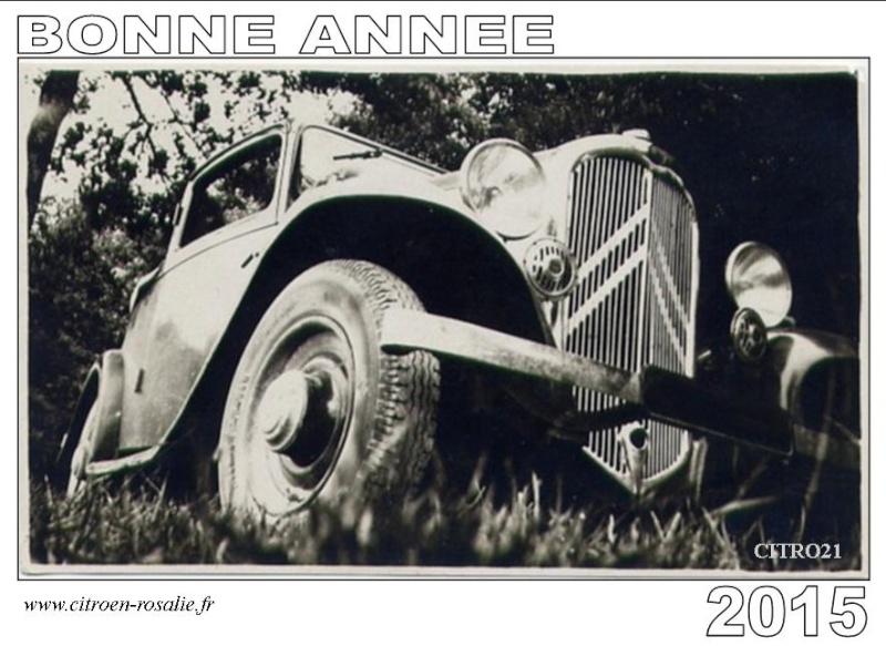 BONNE ANNEE 2015 Rosali10