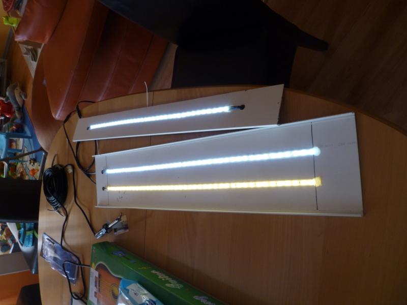 Rampe LED pour moins de 60€ P1050021