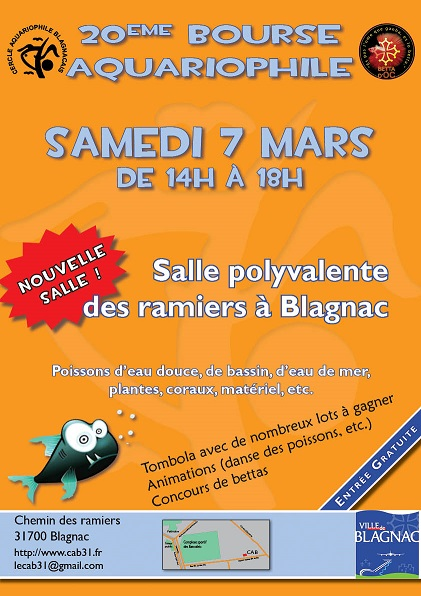 bourse cab 31 blagnac et betta d'oc 14207211