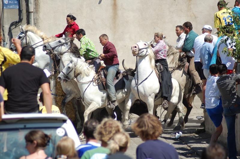concours d'abrivado à gallician le 25/07/2010 Dsc_0050