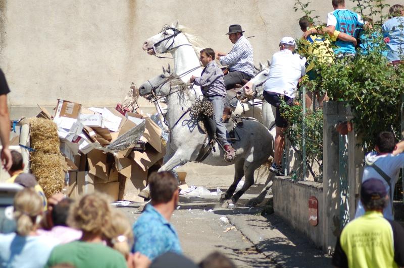 concours d'abrivado à gallician le 25/07/2010 Dsc_0051