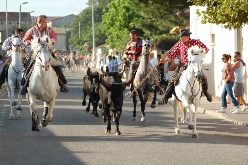 concours d'abrivado à gallician le 25/07/2010 Dsc_0113