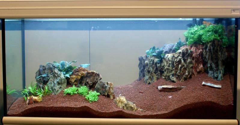 World Aquarium Design Contest Final 2010 JBL Dsc08213