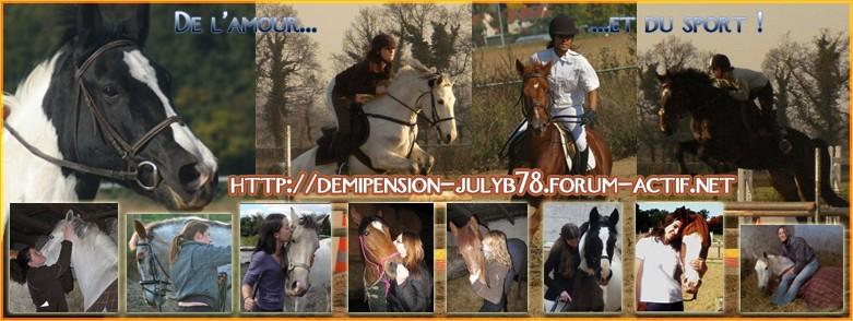 Demi-pension sur chevaux de propriètaire dans le 78