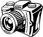 Kakariki , un amour de petit perroquet Camera10