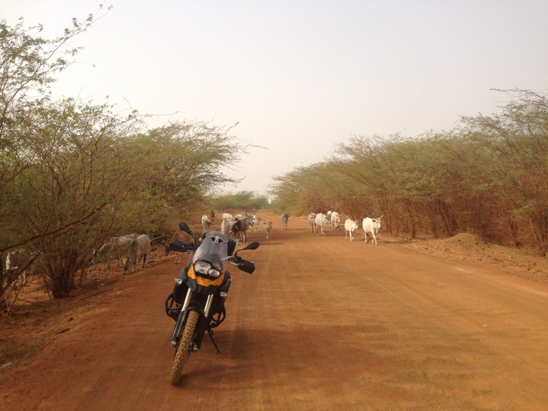 Un trail au Sénégal Img_3111