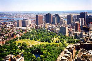 8. Boston Temptation Booooo10
