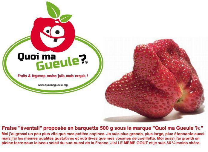 Agriculture => Nourriture => Pourriture (du système) - Page 3 38537211