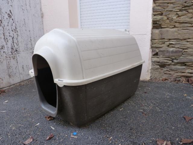 Vends niche plastique P1020511