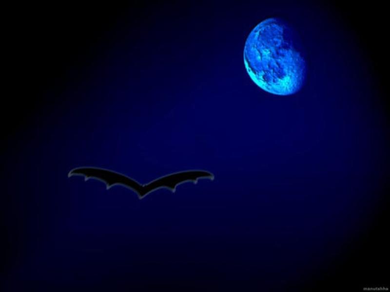 Buona notte a tutti Notte11