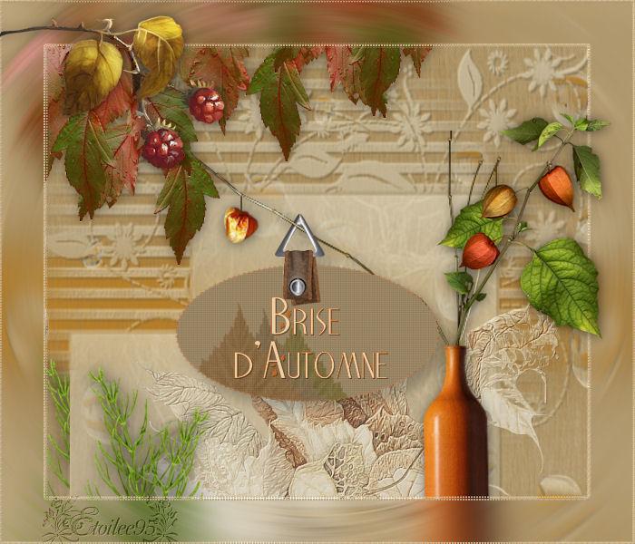 Brise D'automne(Psp) Image613