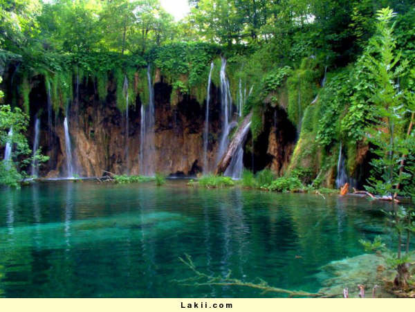 رحلة الى لبنان Rum6qa10