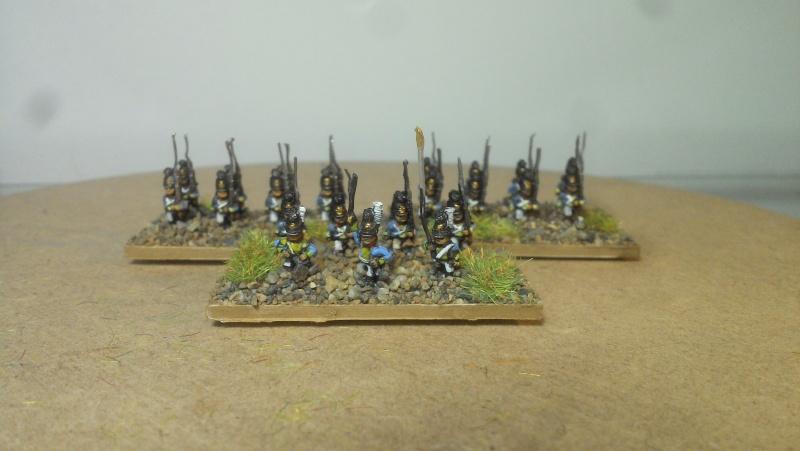 Armée bavaroise Adler 6mm 10eme_10