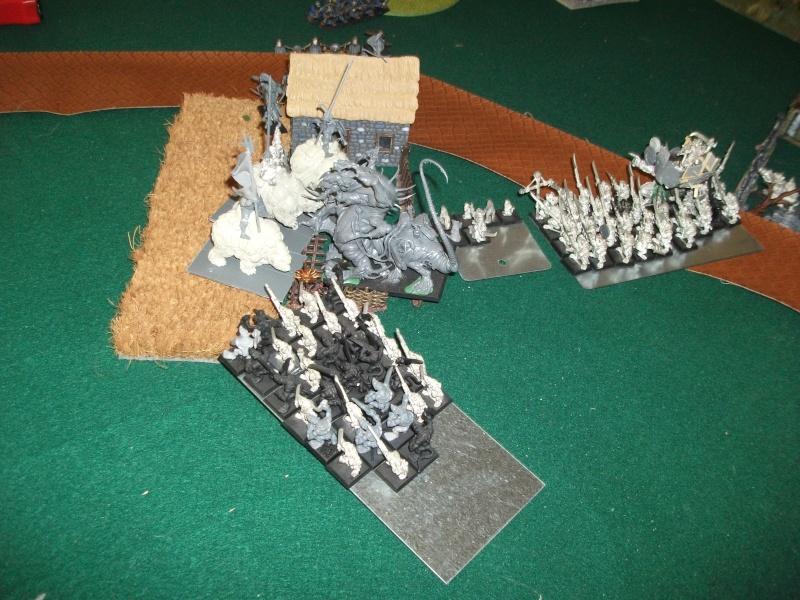 battle 5000pts, nains/empire vs skavens Dscf3119