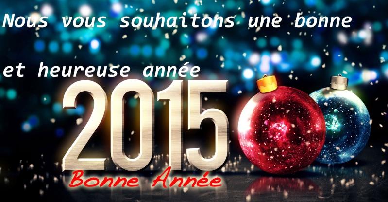 MEILLEURS VOEUX 2015 ! 029_210