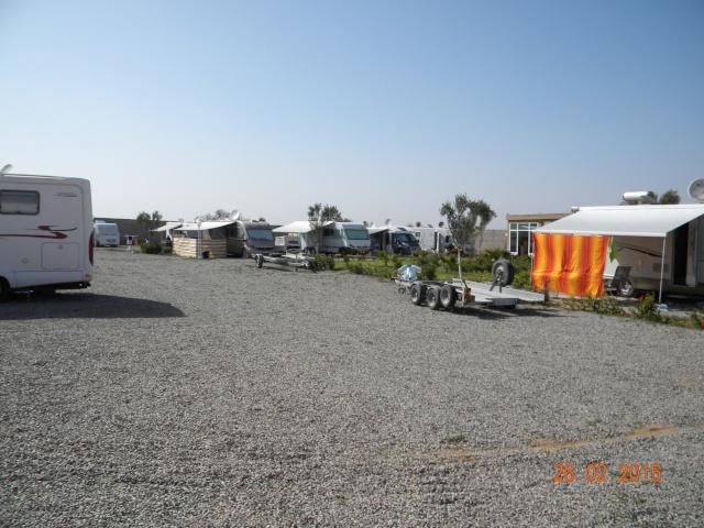 Nouveau camping (Targua) à Tiznit (Zone 9) - Page 3 Dscn4220