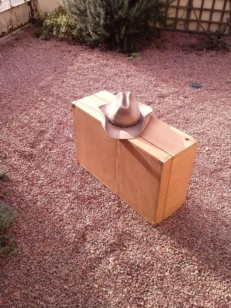 la valise gun cart  Cam02211