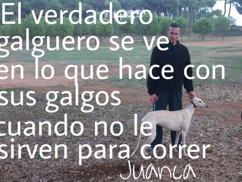 Juan Carlos et ses galgos 15059910