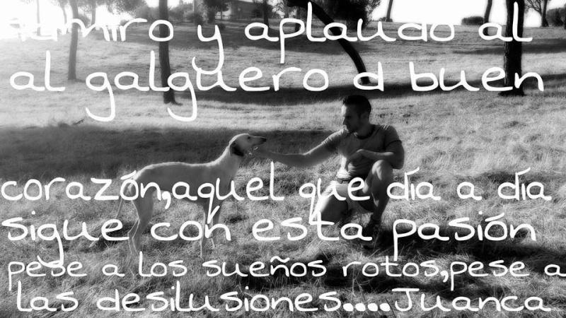 Juan Carlos et ses galgos 15516310