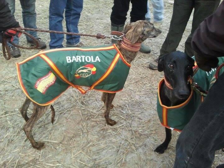 Juan Carlos et ses galgos Bartol10