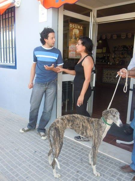 Juan Carlos et ses galgos En_rue10