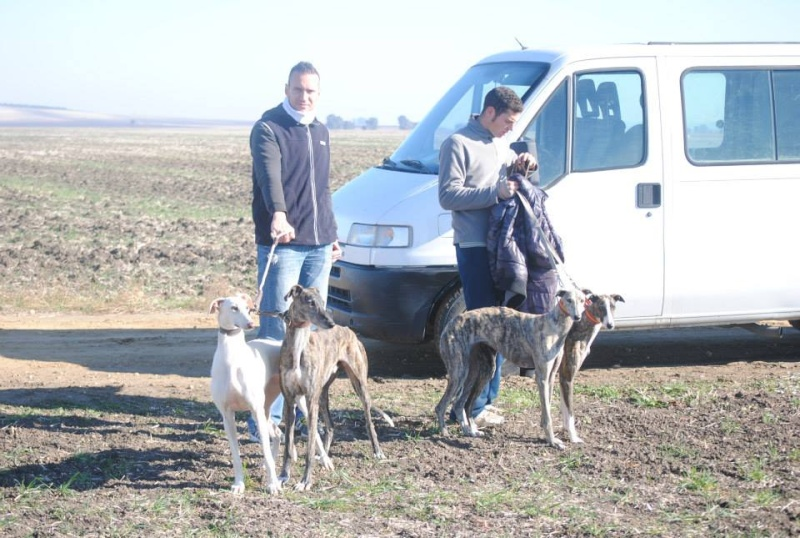 Juan Carlos et ses galgos Photo_10