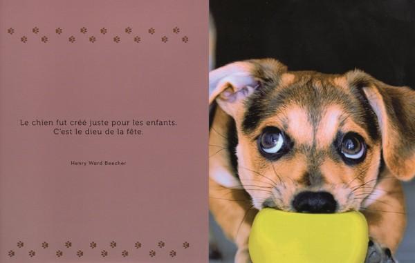 citations sur le chien - Page 4 076bce10