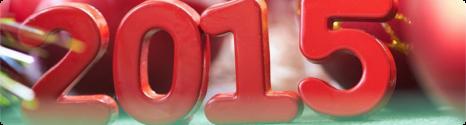 Bonne et heureuse année 2015 de la part de BFN !!! 14200210