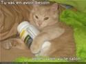 (De)Motivational Poster et Dialogues de Bêtes - Page 19 Pills10