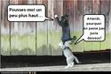 (De)Motivational Poster et Dialogues de Bêtes - Page 19 Plusha10