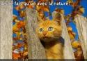 (De)Motivational Poster et Dialogues de Bêtes - Page 19 Unnnat10