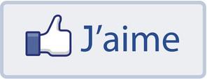 +++ mes étrennes pour les membres d'ACE - Page 3 Fb_jai10